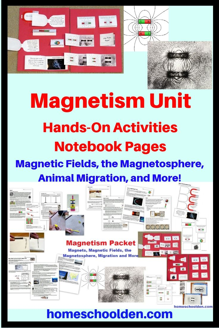 Magnetism Unit Magnetic Fields The Magnetosphere And More Magnet Lesson Plans Science Lesson Plans Elementary Magnet Lessons
