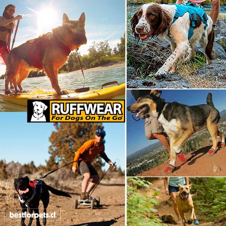 ¿Eres amante de compartir las actividades al aire libre con tu #perro? Visita nuestra tienda #Ruffwear y revisa las correas, arneses, collares y demás accesorios para disfrutar del tiempo libre con tu peludo.