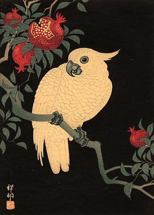 "Shoson 1877 - 1945, ""Cockatoo and Pomegranate at Night"""