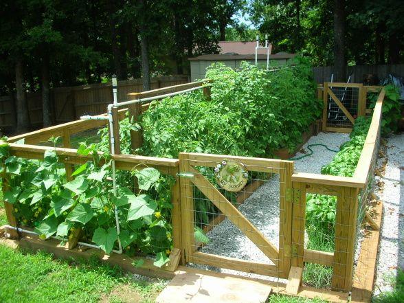 17 Best ideas about Vegetable Garden Fences on Pinterest