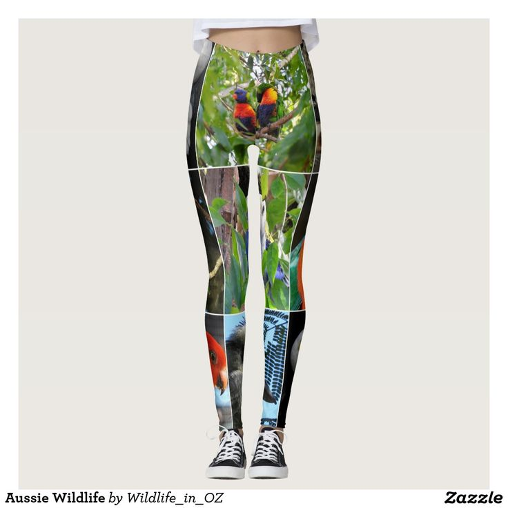 Aussie Wildlife Leggings. Click on photo to view item then click on item to see how to purchase that item. #leggings #activewear #rosella #easternrosella #koala #koalabear #wildlife #australianwildlife #zazzle #lorikeet #rainbowlorikeet