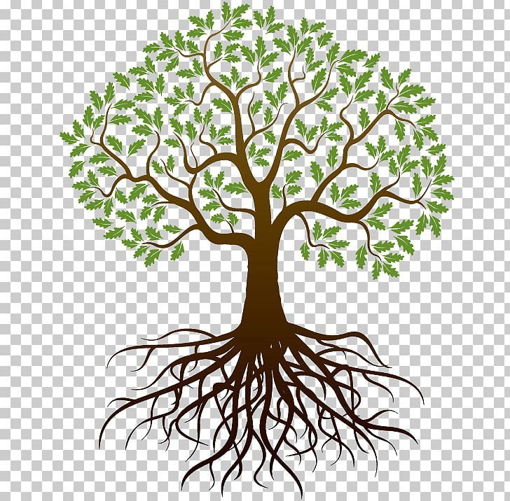 Pin By Jess Asher On Tree Roots Illustration Roots Drawing Tree Roots Tattoo