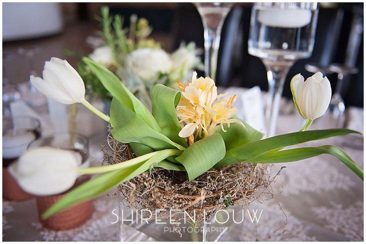 Ingrid and Derrick | Bakenhof Winelands Wedding Venue