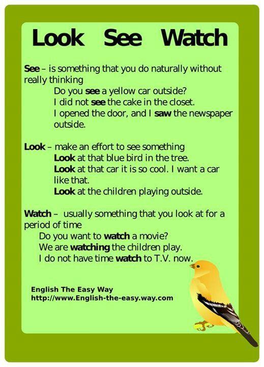 Look, See, Watch