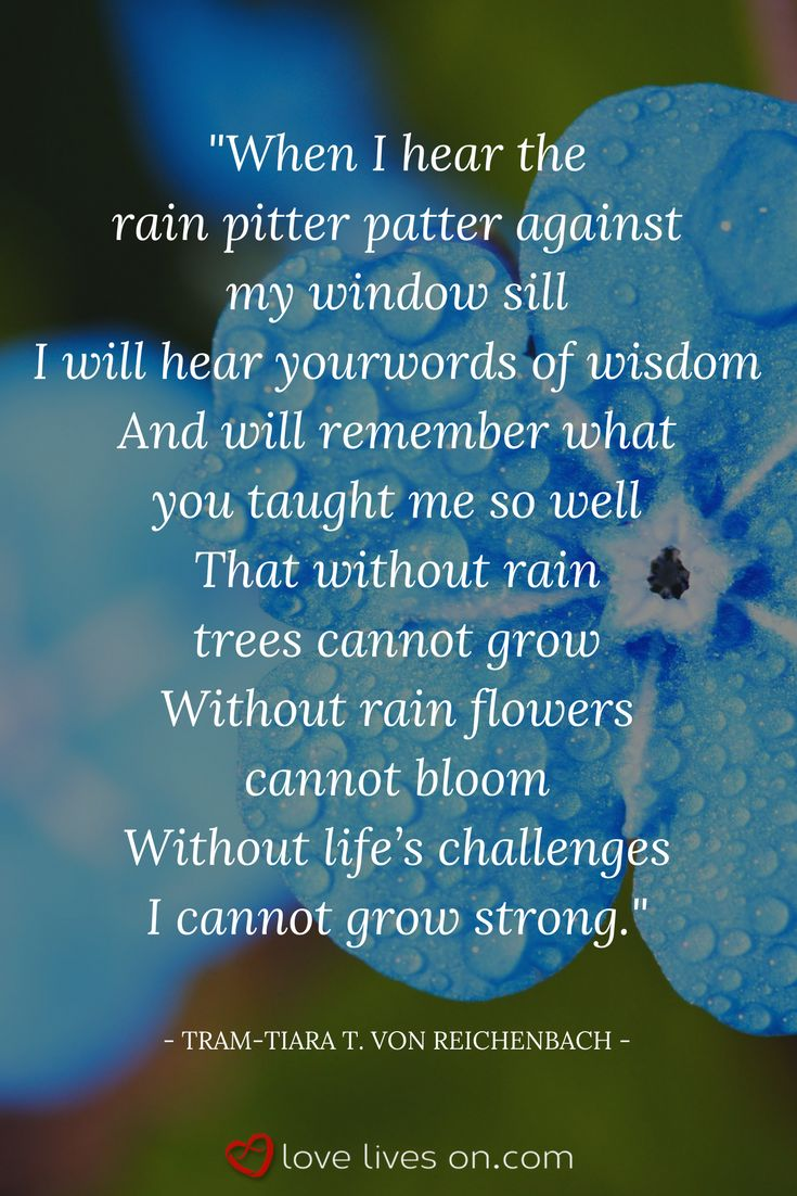 Best 25 funeral quotes ideas only on pinterest winnie the pooh 27 best funeral poems for brother dhlflorist Gallery