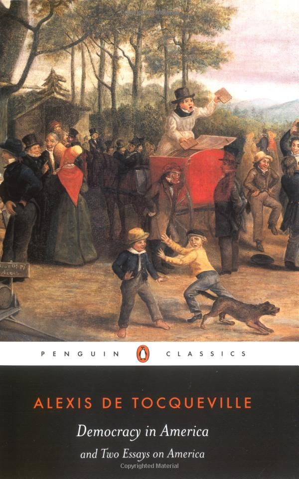 an analysis of despotism in democracy in america by alexis de tocqueville Democracy in america by alexis de tocqueville  sort of compromise between administrative despotism and the sovereignty of the people and they think they have done .