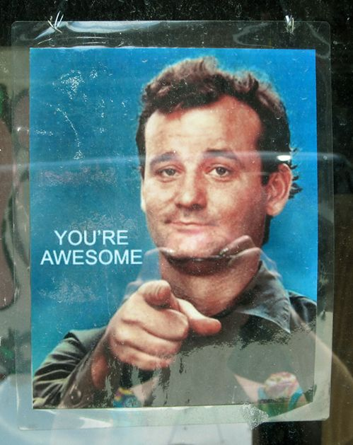 Pass This On And Make Someone's Day: This Man, Classic Movie, Bill Murray, Adverti Things, Funny Quotes About Crushes, Bill Fucking, Billmurray, True Stories, You'R Awesome