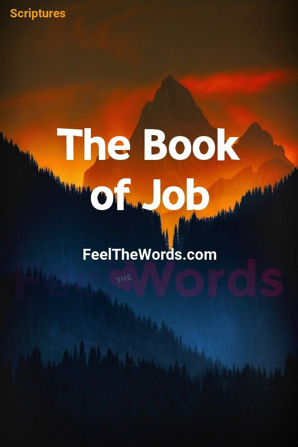 The Book Of Job Bible Feelthewords Quotes Scriptures Verses