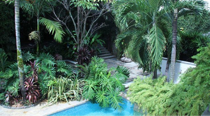 La casa del Níspero, un oasis en Cali. Diseño. Arquitectura. Patio. Piscina. Encuentra dónde comprar este diseño y Producto en Colombia.