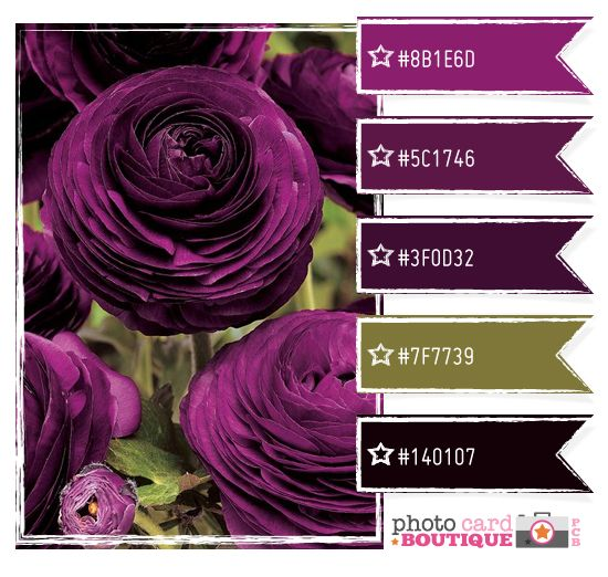 212 best purple and olive images on pinterest color for Olive green colour combination