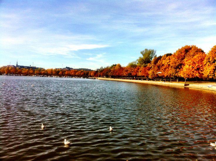 Autumn view over Eläintarhanlahti