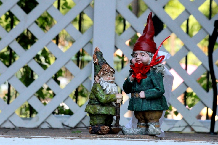 Zookwinkle and MaryAhner's :): Zookwinkl, Maryahner, Gnomes