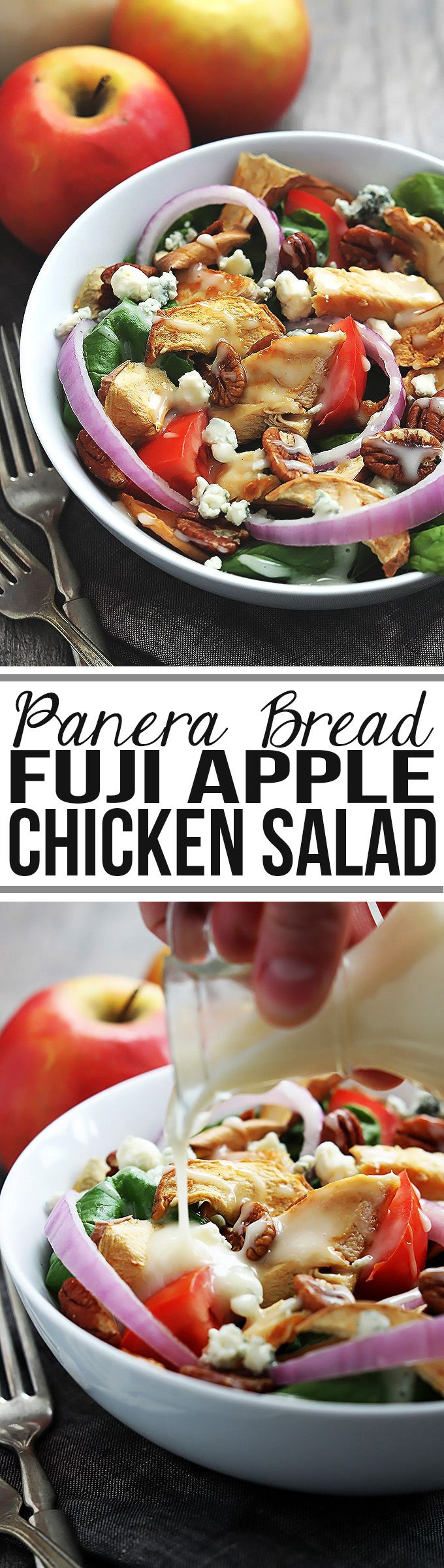 Panera Bread's Fuji Apple Chicken Salad - easy, healthy, and soooo yummy! (Chicken And Apple Recipes)