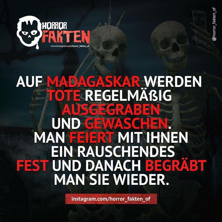 Irgendwie echt ekelig  #horror #horrorfakten #fakten