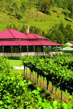 O'Reilly's Canungra Valley Vineyards, Lamington National Park, Qld