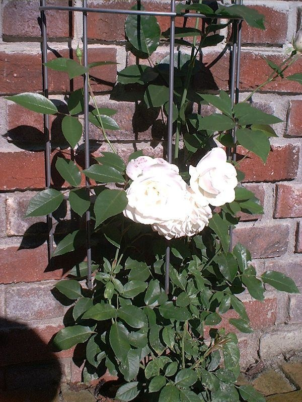 Gartengestaltung - gemauerte Elemente - Planungshilfe