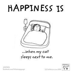 Especially when they purr so calming
