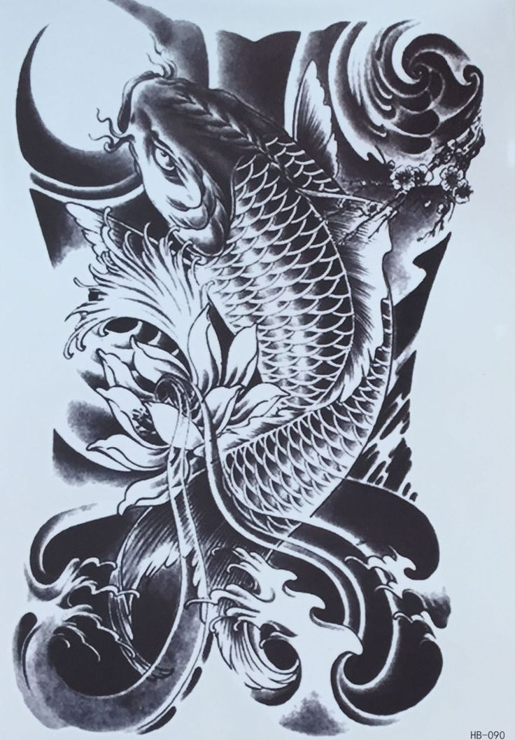 17 best images about tattoo on pinterest traditional for Oldest koi fish