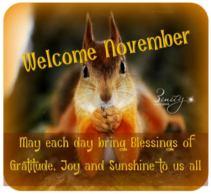 Image result for welcome November blessings