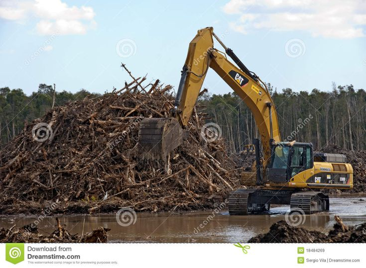 La deforestazione causa l'effetto serra e quindi il surriscaldamento globale perchè ci sono meno alberi che imprigionano l'anidride carboni e liberano l'ossigeno e questo significa più anidride carboni nell'atmosfera