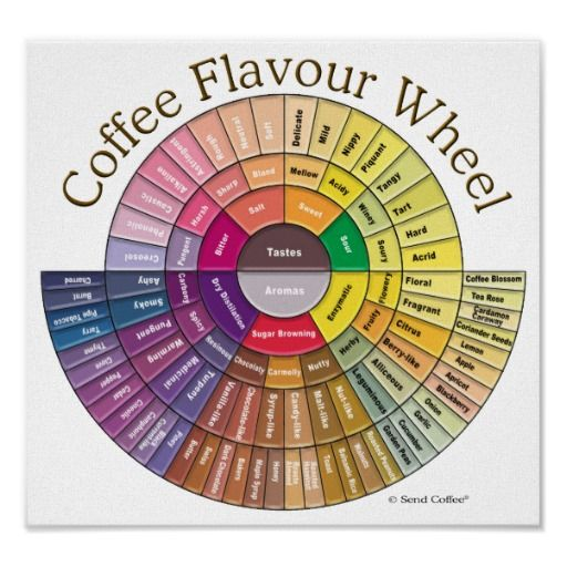 Great 3D version of the Coffee Flavor Wheel for you kitchen or coffee shop.
