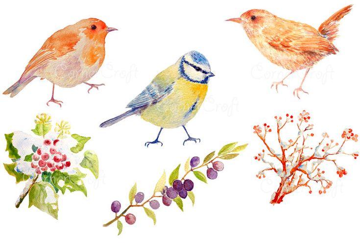 Aves de jardín británico de acuarela digital y por CornerCroft
