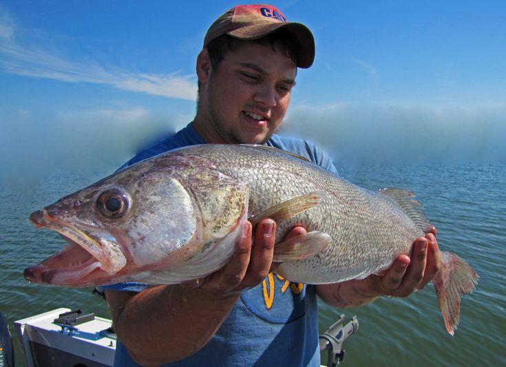 18 best colorado adrenaline fishing trips images on for Pueblo reservoir fishing report