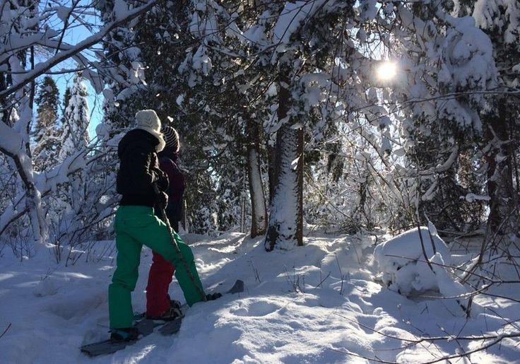 Sentiers pédestres Opasatica | Quoi faire à Rouyn-Noranda | CLD de Rouyn-Noranda Tourisme