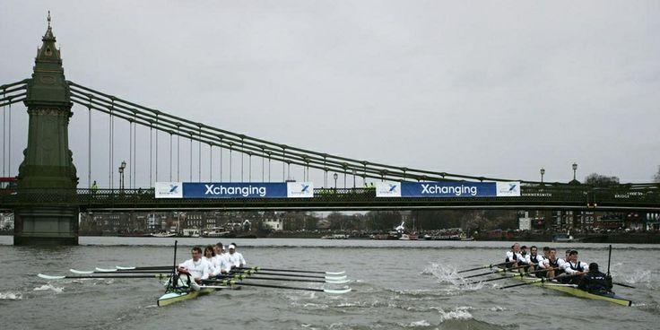 Oxford and Cambridge Boat Race : Ramer pour la gloire.