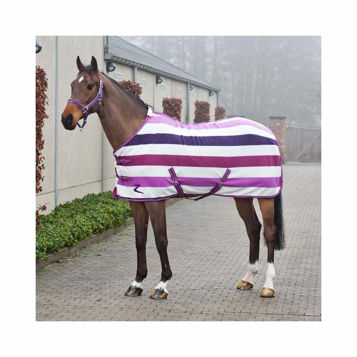 Horze Base Fleece Rug and Fleece Horse Coolers | EQUESTRIAN COLLECTIONS.COM