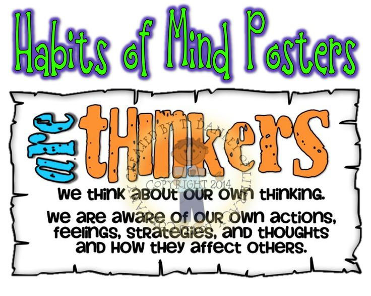 Habits of Mind are skills students need to be successful in school and in life! These colorful posters identify 14 habits of Mind. Great for life skill lessons and classroom displays. In This Class We: •are persistent •are detectives •are communicators •are listeners •are thinkers •are questioners •are a team •are adventurous •are careful •are accurate •are observant •are humorous •are curious •are flexible $