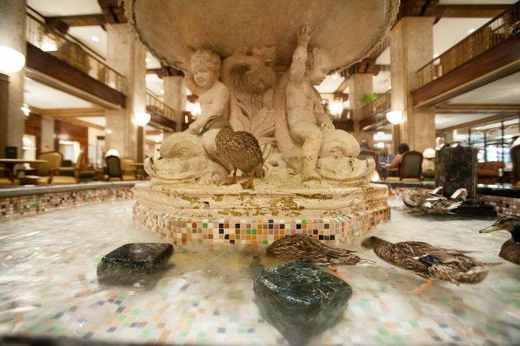 The South's Best Hotels and Inns: The Peabody Hotel (Memphis, Tennessee)