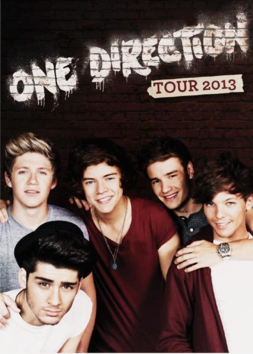 first 1D concert 2013 tour