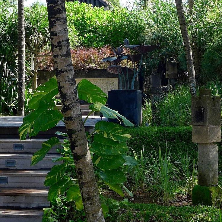 Central terraced gardens at #sesehbeachvillas looking to the secluded back villa. A garden within a garden. By Bali Landscape Company  http://ift.tt/1QzTwns  Photography by @f32stop Bali based artist and photographer  #bestvilla #privatevilla #villaholiday #pantaiseseh #temple #terracing #sculpture #landscape #landscapedesigner #landscapearchitecture #gardenlovers #taman #tropicallandscape  #balilandscaper #landscapecontractor #gardenlovers #tropicaldesign #tropicallandscape…