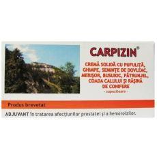Supozitoarele Carpizin sunt indicate in tratamentul afectiunilor prostatei sau hemoroizilor datorita extractelor naturale de rasina de conifere, pufulita, ghimpe, busuioc, frunze de merisor, patrunjel, ulei de seminte de dovleac, coada calului, mugur de plop, ceara de albine.