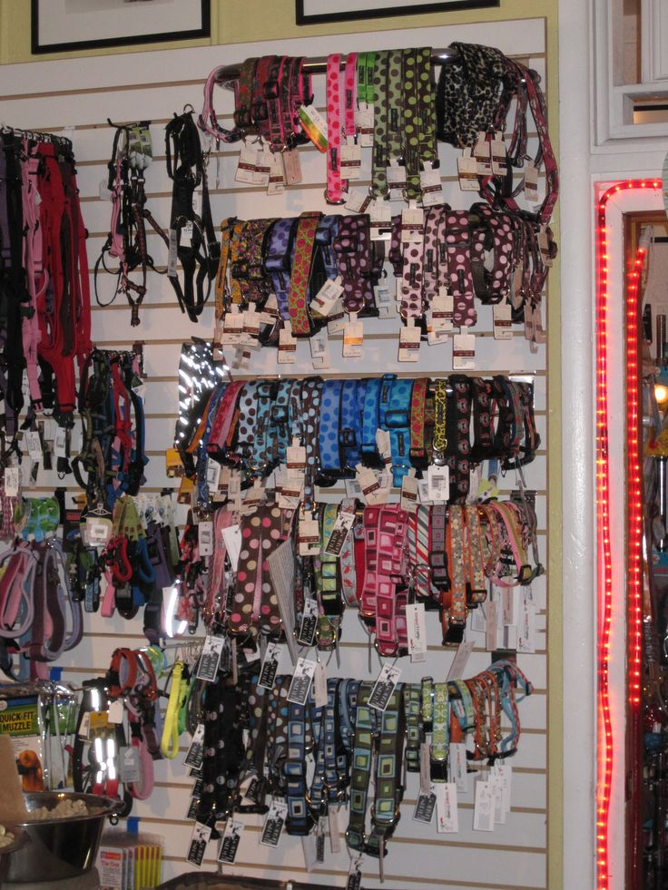 Pet Boutique Display Ideas See You In Orlando At The
