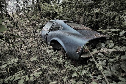 Nice cars left for dead