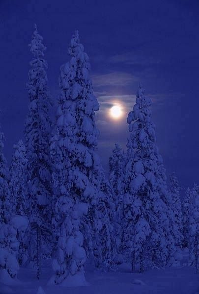 Sights of Finland: The moon hangs over a quiet snowy night.