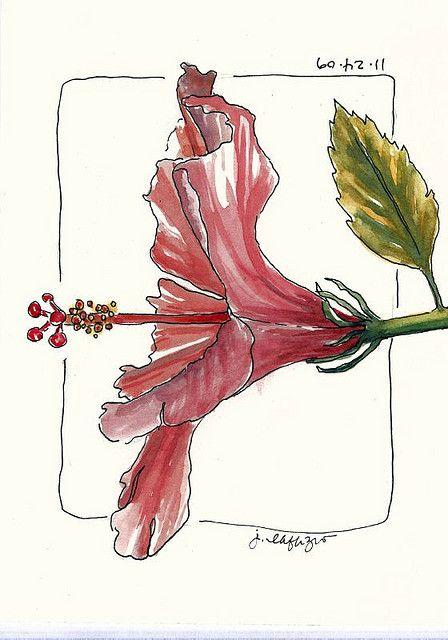 from Jane LaFazio's sketchbook