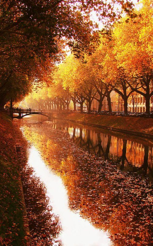 Duesseldorf in Autumn, North Rhine-Westphalia, Germany | by Sonja Ehlen Photography