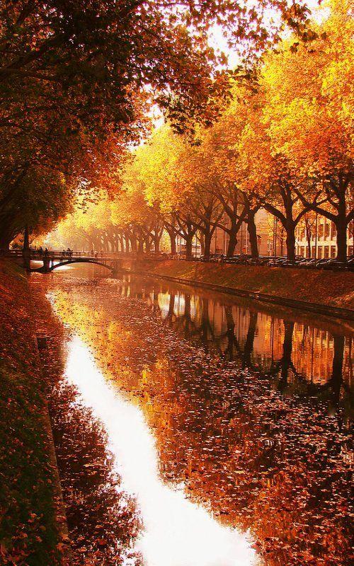 Duesseldorf in Autumn, North Rhine-Westphalia, Germany | by Sonja Ehlen Photography