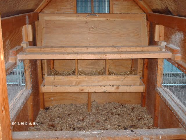 Good interior coop plan note that the ventilation is for Chicken coop interior designs
