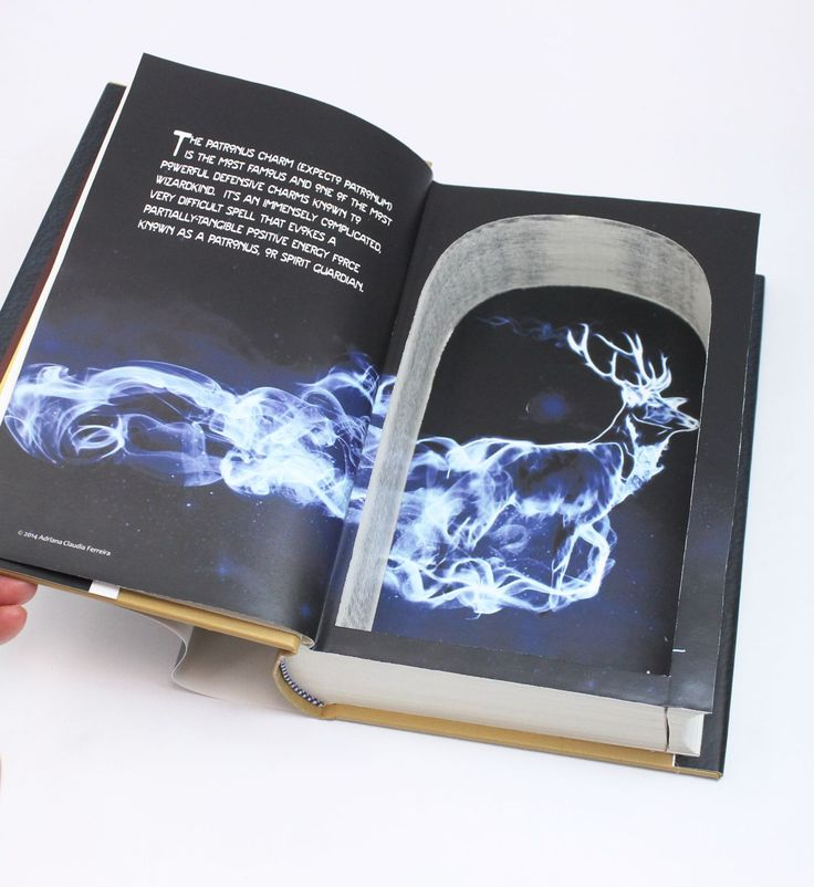 Defense Against the Dark Arts - Hollow Book Safe for Harry Potter Fans