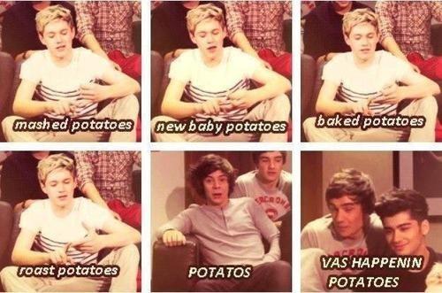 Niall Horan, Liam Payne, Harry Styles, Louis Tomlinson, Zayn Malik, Video diaries, One Direction