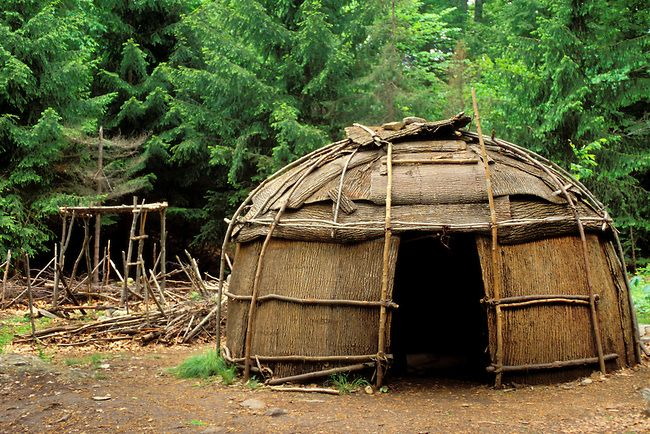 cherokee survival in early america The appalachian cherokee nation, is one of the cherokee indians had many native american villages spread out in the early 1900s, not only the cherokee.