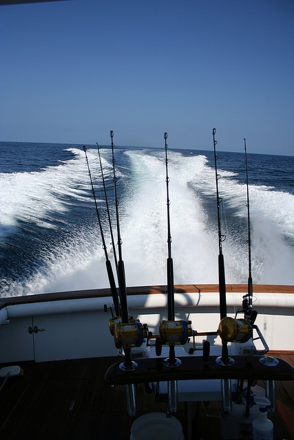 30 best images about fishing ocean city md on pinterest for Ocean city md fishing