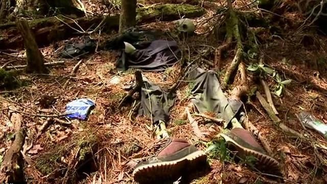The Aokigahara Forest is the most popular site for suicides in Japan.