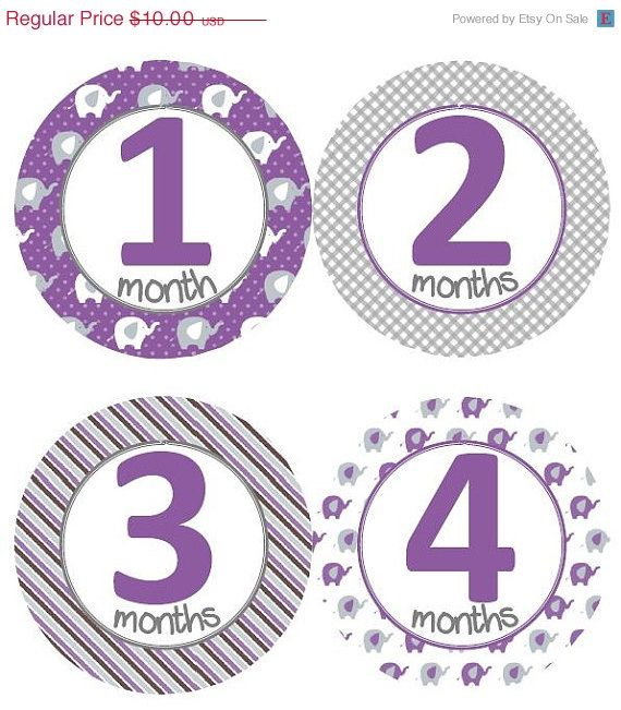 ON SALE Baby Monthly Milestone Growth Stickers Purple and Grey Elephant Nursery Theme Baby Shower Gift Baby Photo Prop by GinaMarieOriginals on Etsy https://www.etsy.com/listing/202592709/on-sale-baby-monthly-milestone-growth
