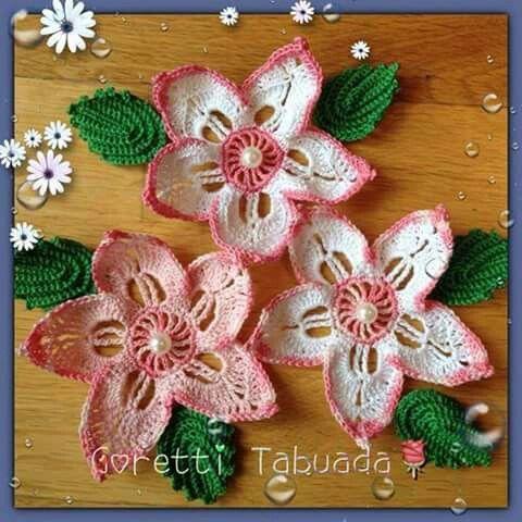 Mejores 332 imágenes de flores y hojas en Pinterest | Hojas, Flores ...