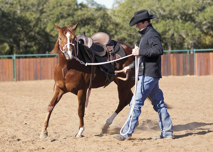 Teach your colt to accept the feel of a saddle in motion to avoid getting bucked off later.